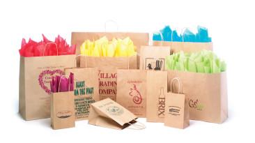 Paper Shopping Bags: Natural Kraft Shopping Bags