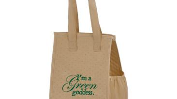 Non Woven Insulated Bag: EY2KC812