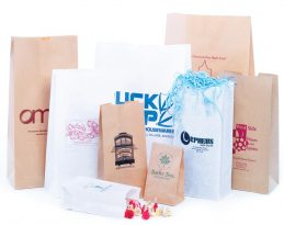 SOS Lunch Bags: White & Natural Kraft