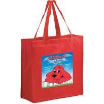 Non Woven Shopping Bag: EY2K13513EV