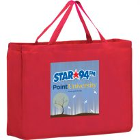 Non Woven Shopping Bag: EY2K16612