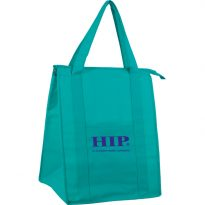 Non Woven Insulated Bag: EY2KC1216