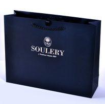 Paper Rope Handle Bags: Soulery