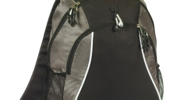 Backpacks & Computer Bags: EBP125GY