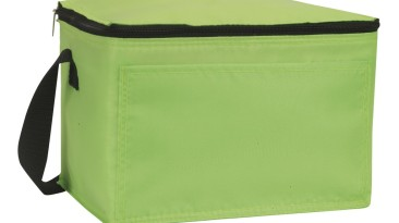 Insulated Cooler Bag: ECB112LG
