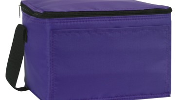 Insulated Cooler Bag: ECB112PL