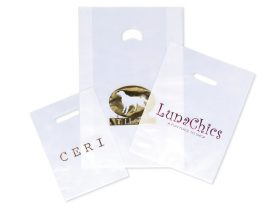 Frosted Merchandise Bags